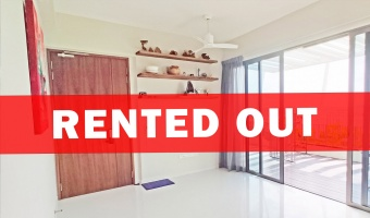 107C Tampines Road, 2 Bedrooms Bedrooms, ,2 BathroomsBathrooms,Condominium,For Rent,Tampines Road,1024
